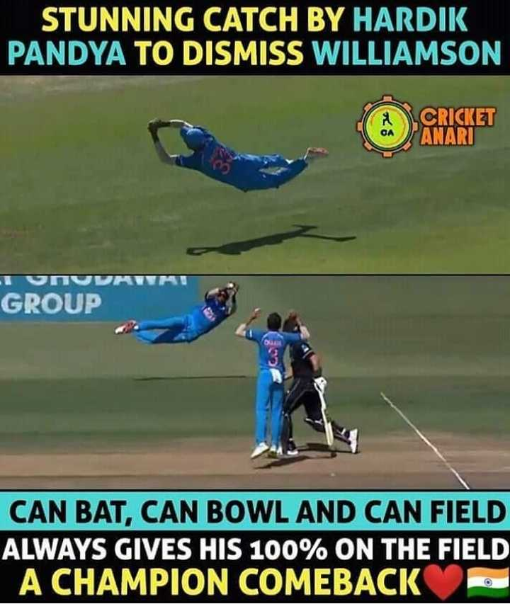 🏏न्यूजीलैंड बनाम भारत तीसरा वनडे🇮🇳 - STUNNING CATCH BY HARDIK PANDYA TO DISMISS WILLIAMSON A CRICKET GROUP CAN BAT , CAN BOWL AND CAN FIELD ALWAYS GIVES HIS 100 % ON THE FIELD A CHAMPION COMEBACK - ShareChat