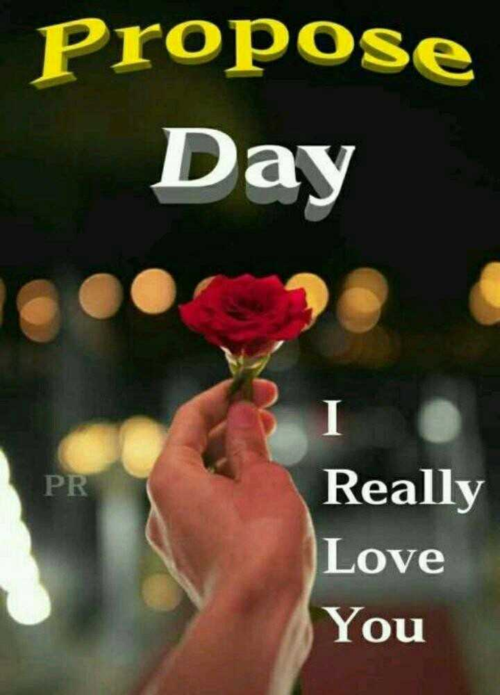 💑प्रपोज डे - Propose Day PR Really Love You - ShareChat