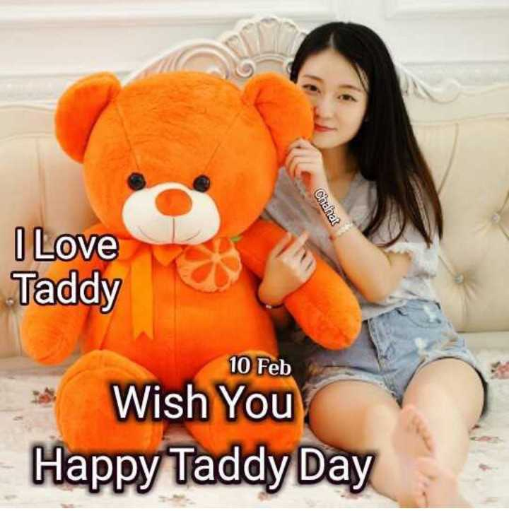 मेरा शहर - Chahat I Love Taddy 10 Feb Wish You Happy Taddy Day - ShareChat