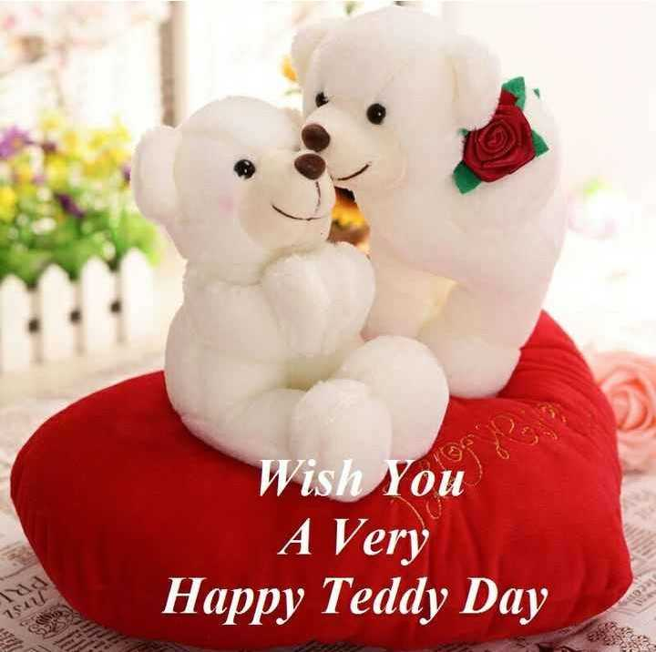 मेरा शहर - Wish You A Very Happy Teddy Day - ShareChat