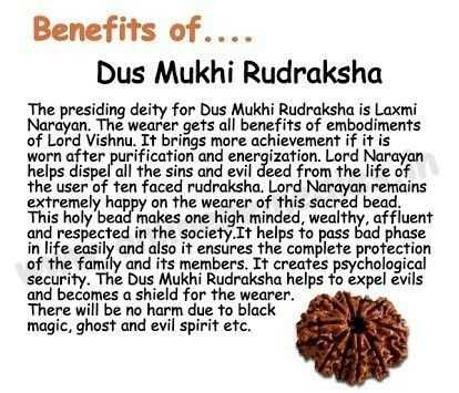 रुद्राक्ष - Benefits of . Dus Mukhi Rudraksha The presiding deity for Dus Mukhi Rudraksha is Laxmi Narayan . The wearer gets all benefits of embodiments of Lord Vishnu . It brings more achievement if it is worn after purification and energization . Lord Narayan helps dispel all the sins and evil deed from the life of the user of ten faced rudraksha . Lord Narayan remains extremely happy on the wearer of this sacred bead . This holy bead makes one high minded , wealthy , affluent and respected in the society . It helps to pass bad phase in life easily and also it ensures the complete profection of the family and its members . It creates psychological security . The Dus Mukhi Rudraksha helps to expel evils and becomes a shield for the wearer . There will be no harm due to black magic , ghost and evil spirit etc . - ShareChat
