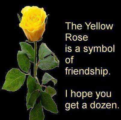 🌹रोज डे - The Yellow Rose is a symbol of friendship . I hope you get a dozen . - ShareChat