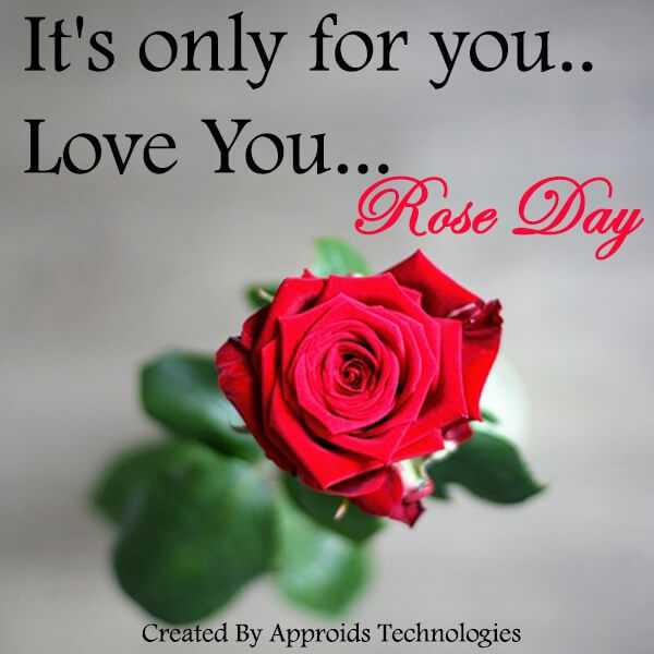 🌹रोज डे - It ' s only for you . . Love YOU . Rose Day Created By Approids Technologies - ShareChat