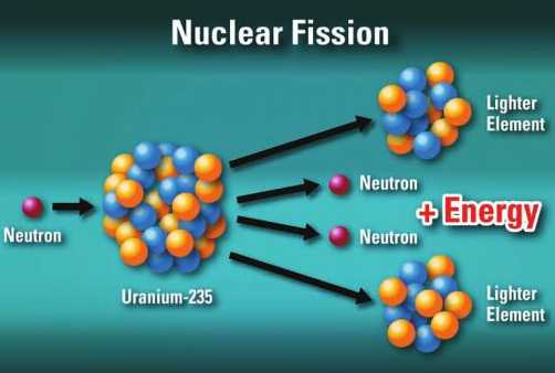 विज्ञान - Nuclear Fission Lighter Element Neutron Neutron Neutron Energy Energy Neutron Neutron Uranium - 235 Lighter Element - ShareChat