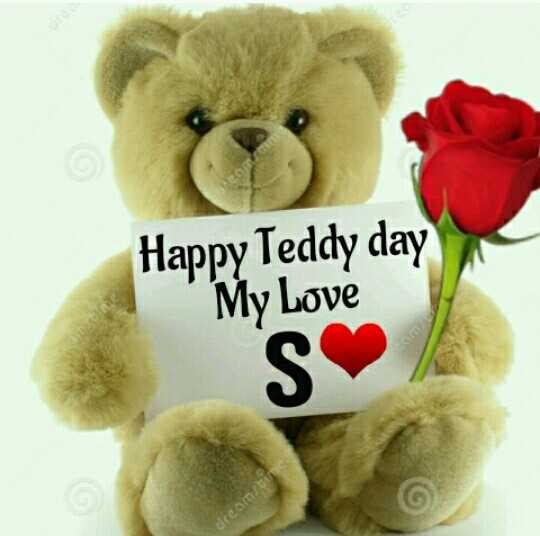 📹 वैलेंटाइन video 💚 - Happy Teddy day My Love SO dreamstime - ShareChat