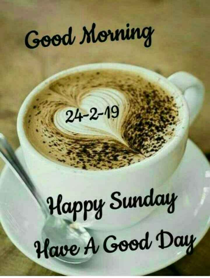 🌷शुभ रविवार - Good Morning 24 - 2 - 19 Happy Sunday Have A Good Day - ShareChat