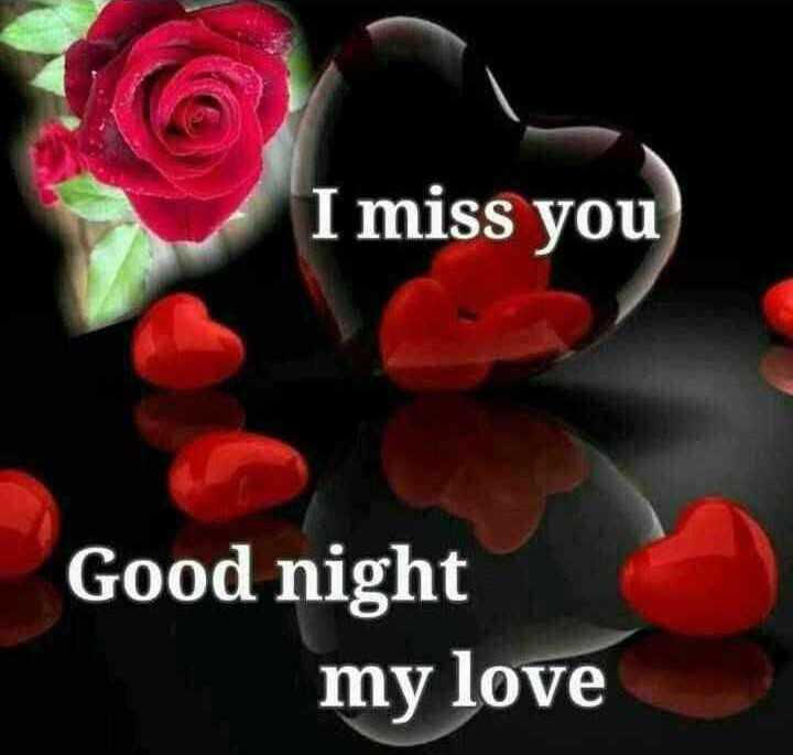 🌙शुभरात्रि - I miss you Good night my love - ShareChat