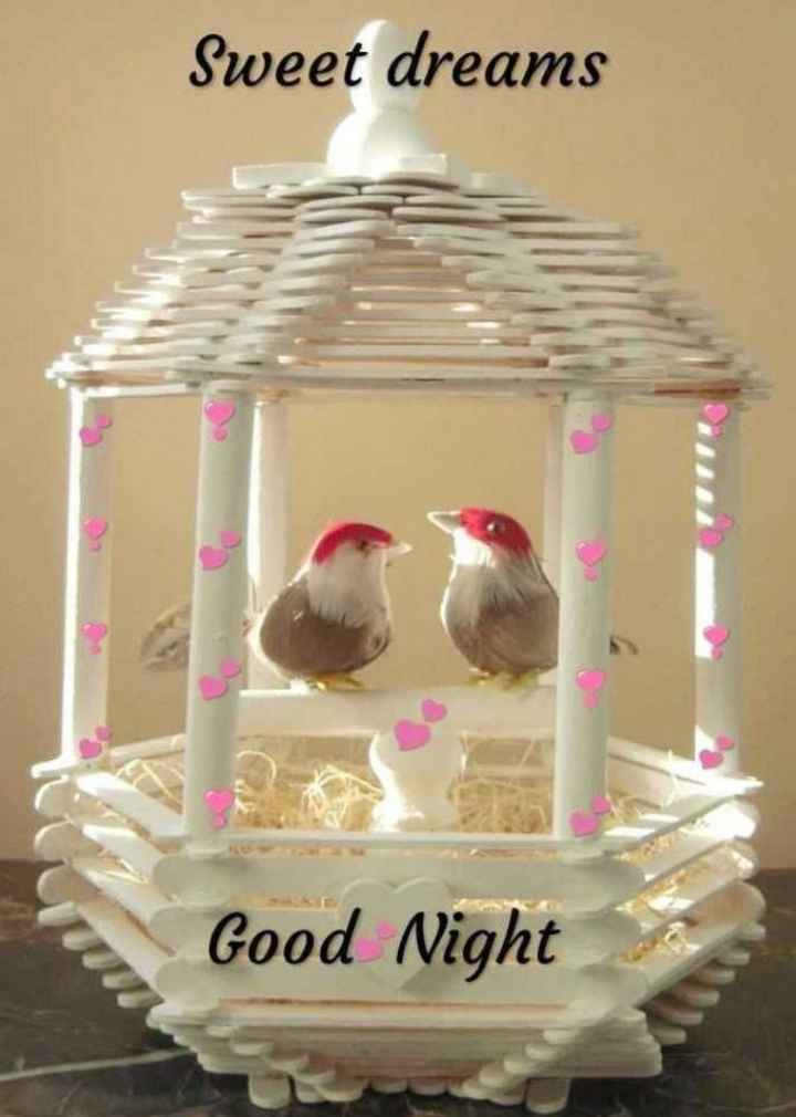 🌙शुभरात्रि - Sweet dreams Good Night - ShareChat