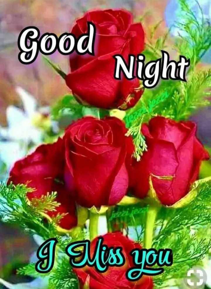 🌙शुभरात्रि - Good Night g Miss you - ShareChat
