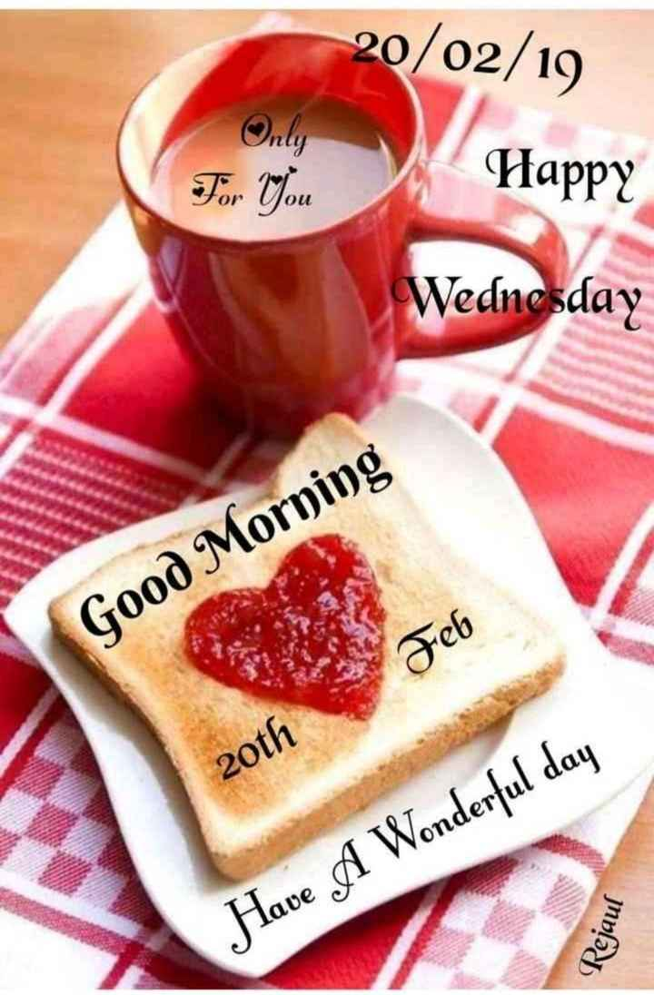 सुप्रभात - 20 / 02 / 19 Only For You Happy Wednesday Good Morning Feb 20th Have A Wonderful day Rejaul - ShareChat