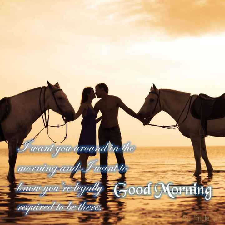 🌞सुप्रभात🌞 - I want you around on the morning and I want to know you ' re legally Good Morning required to be there . Bu Angle - ShareChat