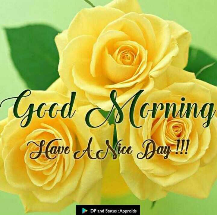 🌄सुप्रभात - Good Morning Slave A Nice Day ! ! ! DP and Status : Approids - ShareChat