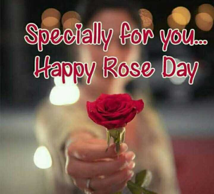 🌹हैप्पी रोज डे🌹 - Specially for you . com Happy Rose Day - ShareChat