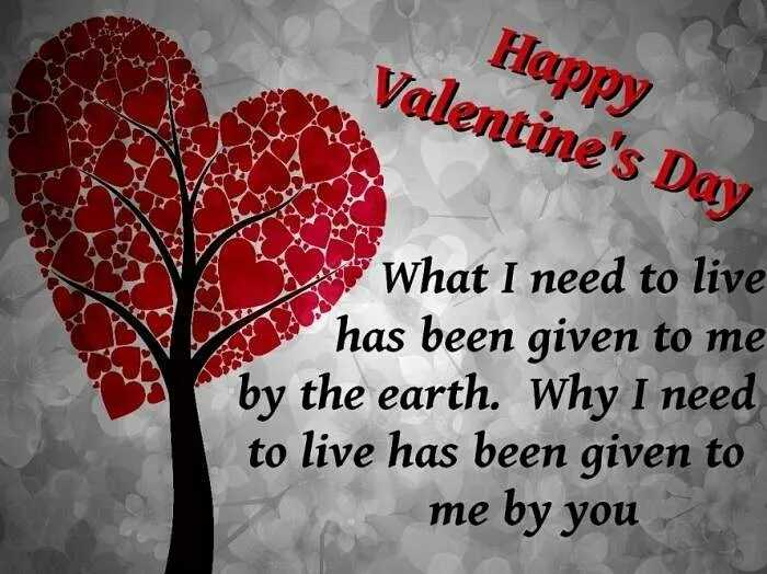 💕हैप्पी वैलेंटाइन डे - Happy Valentine ' s Day L What I need to live has been given to me by the earth . Why I need to live has been given to me by you - ShareChat