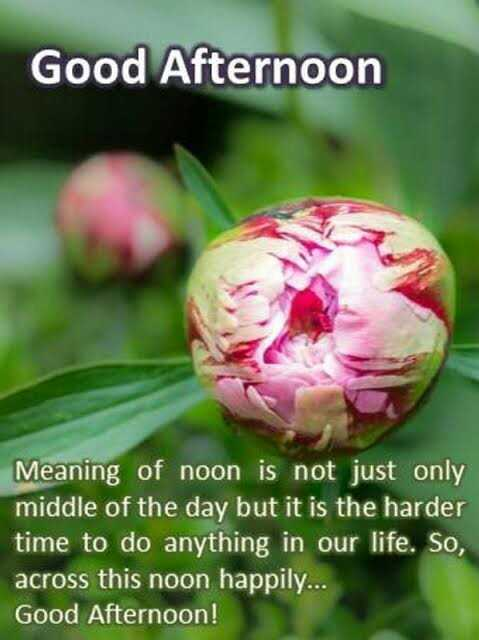 🌝শুভ দুপুর - Good Afternoon Meaning of noon is not just only middle of the day but it is the harder time to do anything in our life . So , across this noon happily . . . Good Afternoon ! - ShareChat