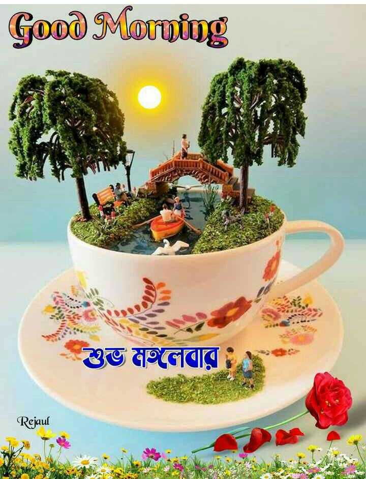 🌻শুভ সকাল 🌻 - Good Morning শুভ তলার Rejaul - ShareChat