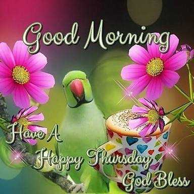 🌞সুপ্রভাত - Good Morning Have A Happy Thursday God Bless - ShareChat