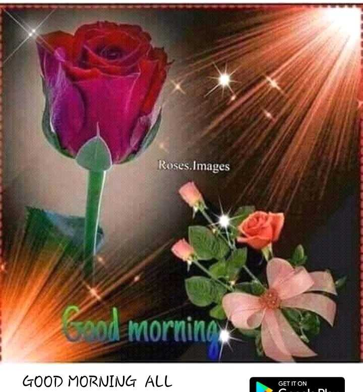🌞 সুপ্ৰভাত - Roses . Images NE Zood morning GOOD MORNING ALL GET IT ON - L . DI . - ShareChat