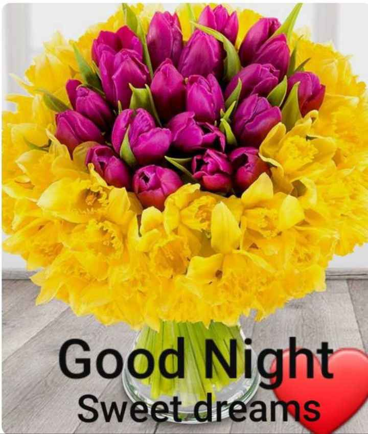 🌙  ਗੁੱਡ ਨਾਇਟ - Good Night Sweet dreams - ShareChat