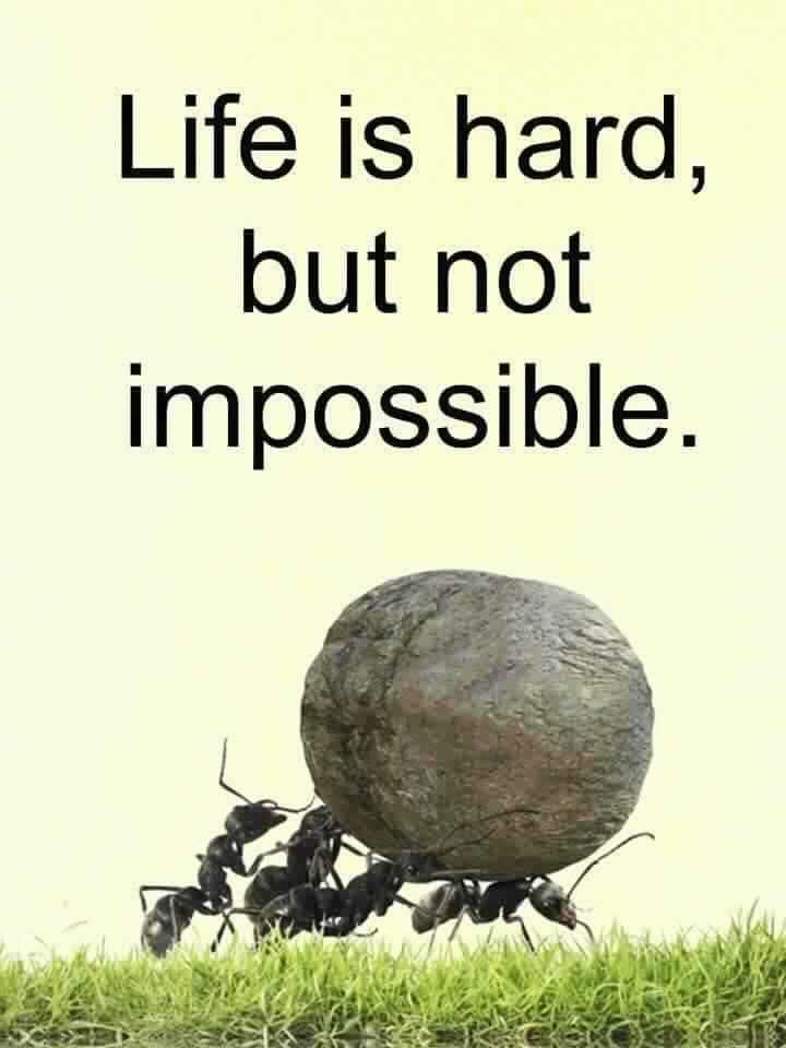 🙏ଆଜିର ଅନୁଚିନ୍ତା - Life is hard , but not impossible . - ShareChat