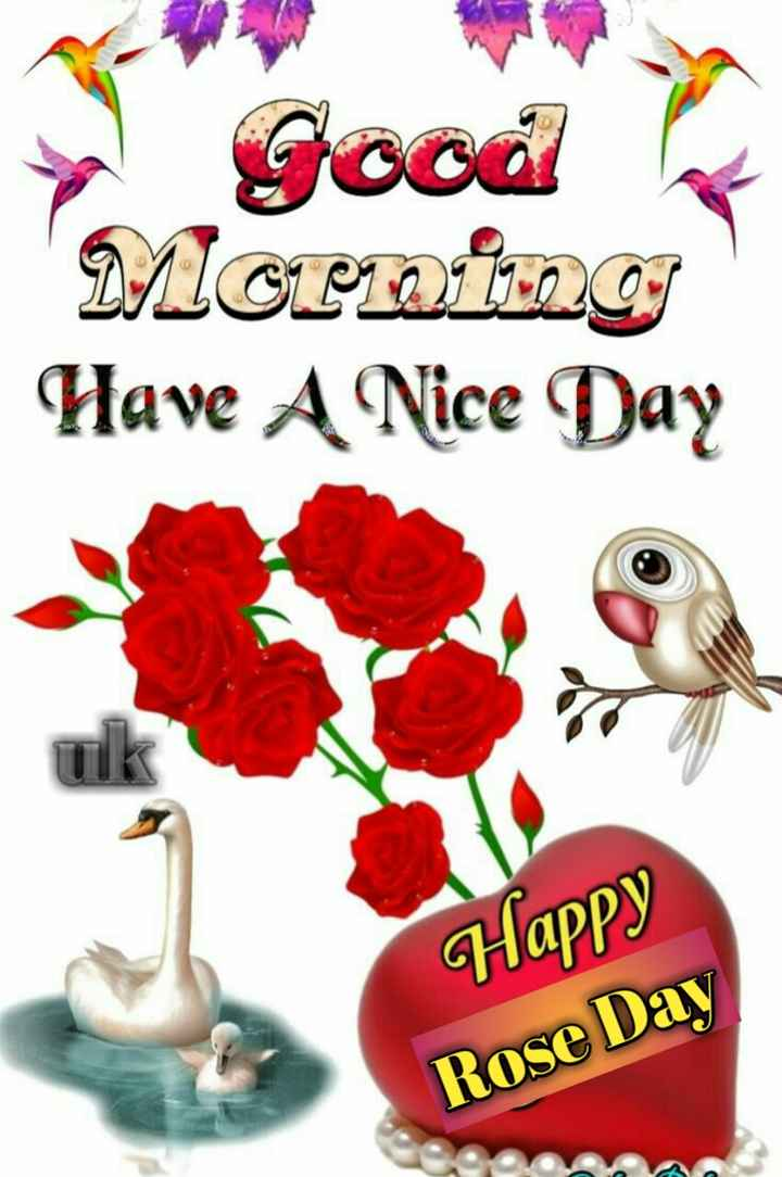 ରୋଜ ଡେ - ► Good Morning Have A Nice Day Happy Rose Day - ShareChat