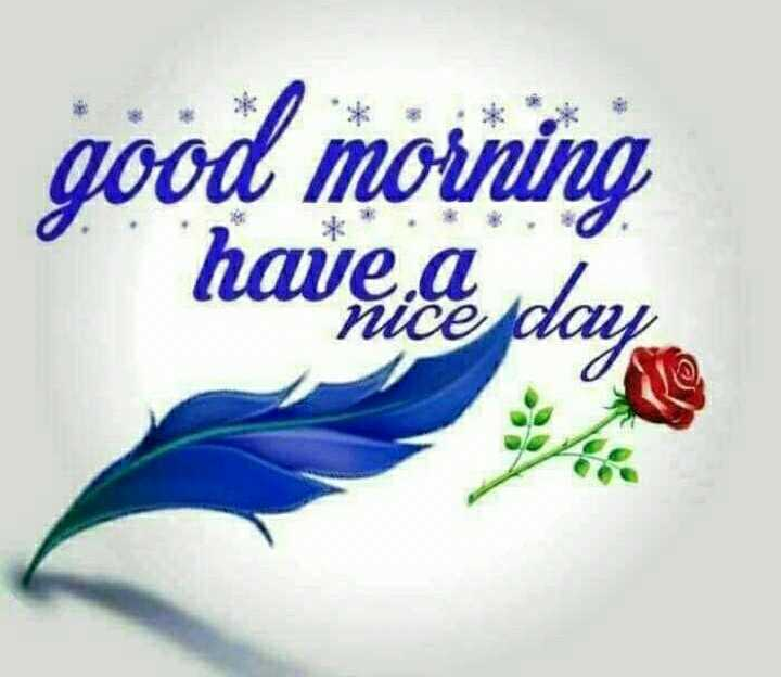 🌅ಶುಭೋದಯ - good morning havice day - ShareChat
