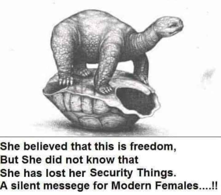 🎤 അഭിപ്രായങ്ങള്‍ - She believed that this is freedom , But She did not know that She has lost her Security Things . A silent messege for Modern Females . . . . ! ! - ShareChat