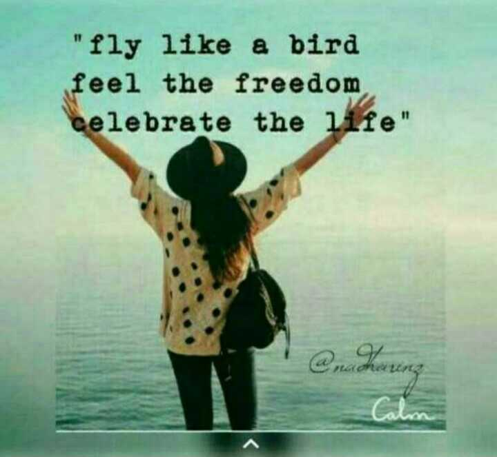 ഞാൻ സിംഗിളാ - fly like a bird feel the freedom celebrate the life rachating Calm - ShareChat