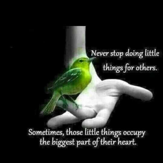✍ Quotes - Never stop doing little things for others . Sometimes , those little things occupy the biggest part of their heart .  - ShareChat