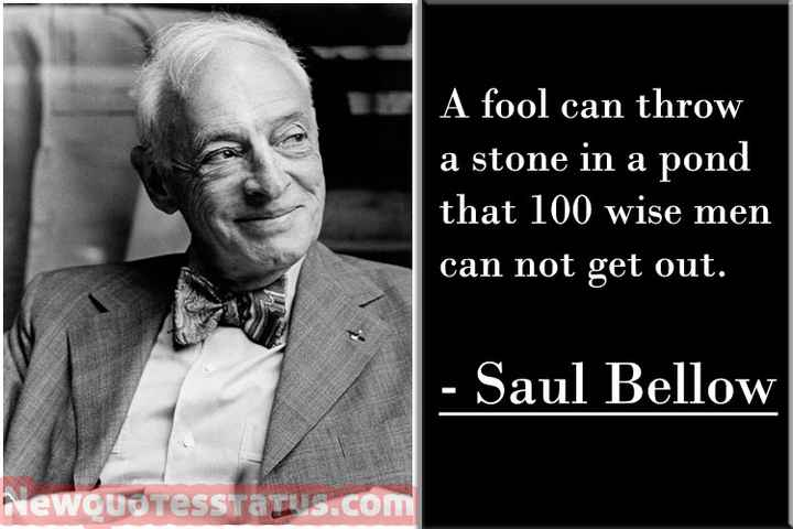 ✍ Quotes - A fool can throw a stone in a pond that 100 wise men can not get out . - Saul Bellow NewQuoTesstatus . com - ShareChat