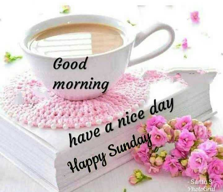 ✨रविवार - Good morning have a nice day Happy Sunday - Santos PhotoGrid - ShareChat