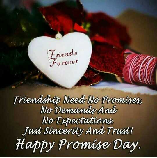 ❤️good morning❤️ - Friends Forever Will Friendship Need No Promises , No Demands And No Expectations . Just Sincerity And Trust ! Happy Promise Day . - ShareChat