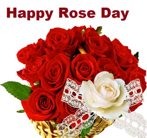 ❤miss you😔😔 - Happy Rose Day DUIS ASS - ShareChat