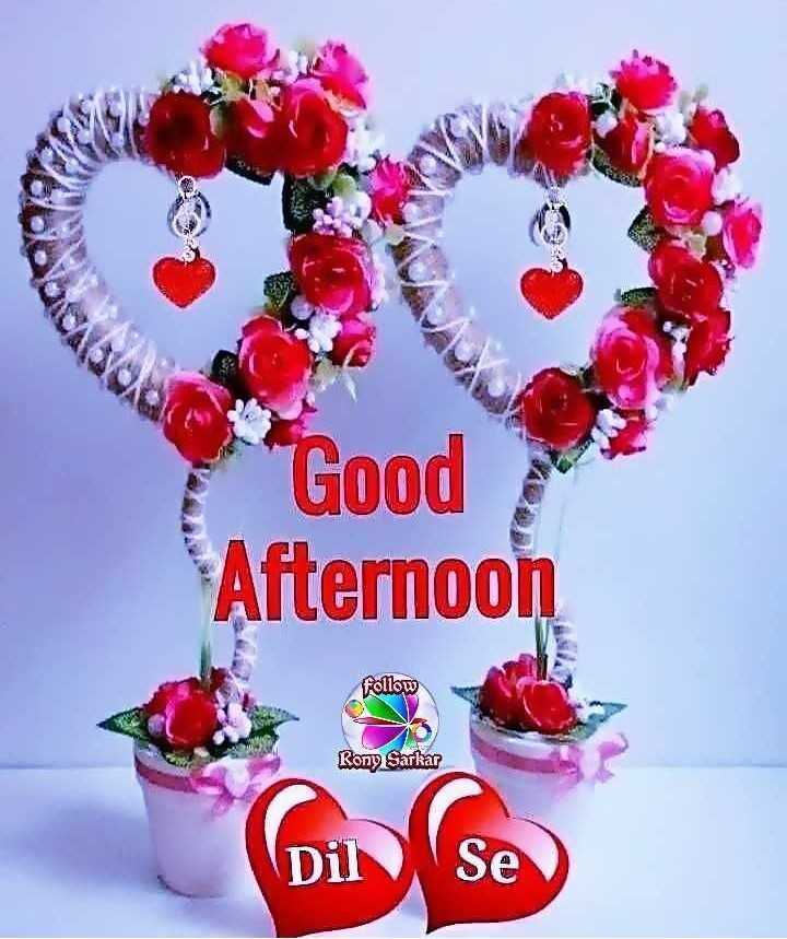 ☀️ શુભ બપોર - Good Afternoon follow Rony Sarkar Dil Se  - ShareChat