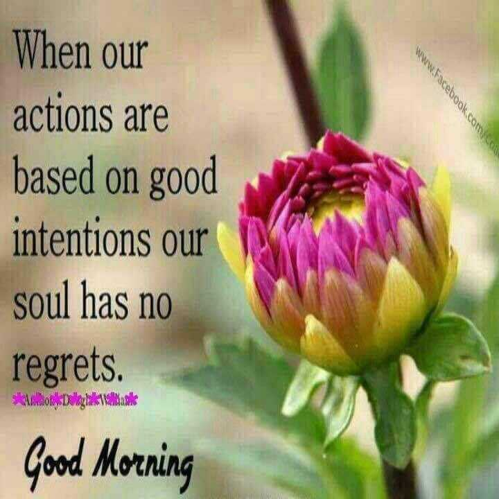 🌞Good Morning🌞 - www . facebook . com When our actions are based on good intentions our soul has no regrets . okk Dalghakalak Good Morning  - ShareChat