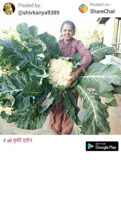 🚜कृषी दर्शन - Posted by : @ shivkanya9389 Posted on : ShareChat # ord o GET IT ON Google Play - ShareChat