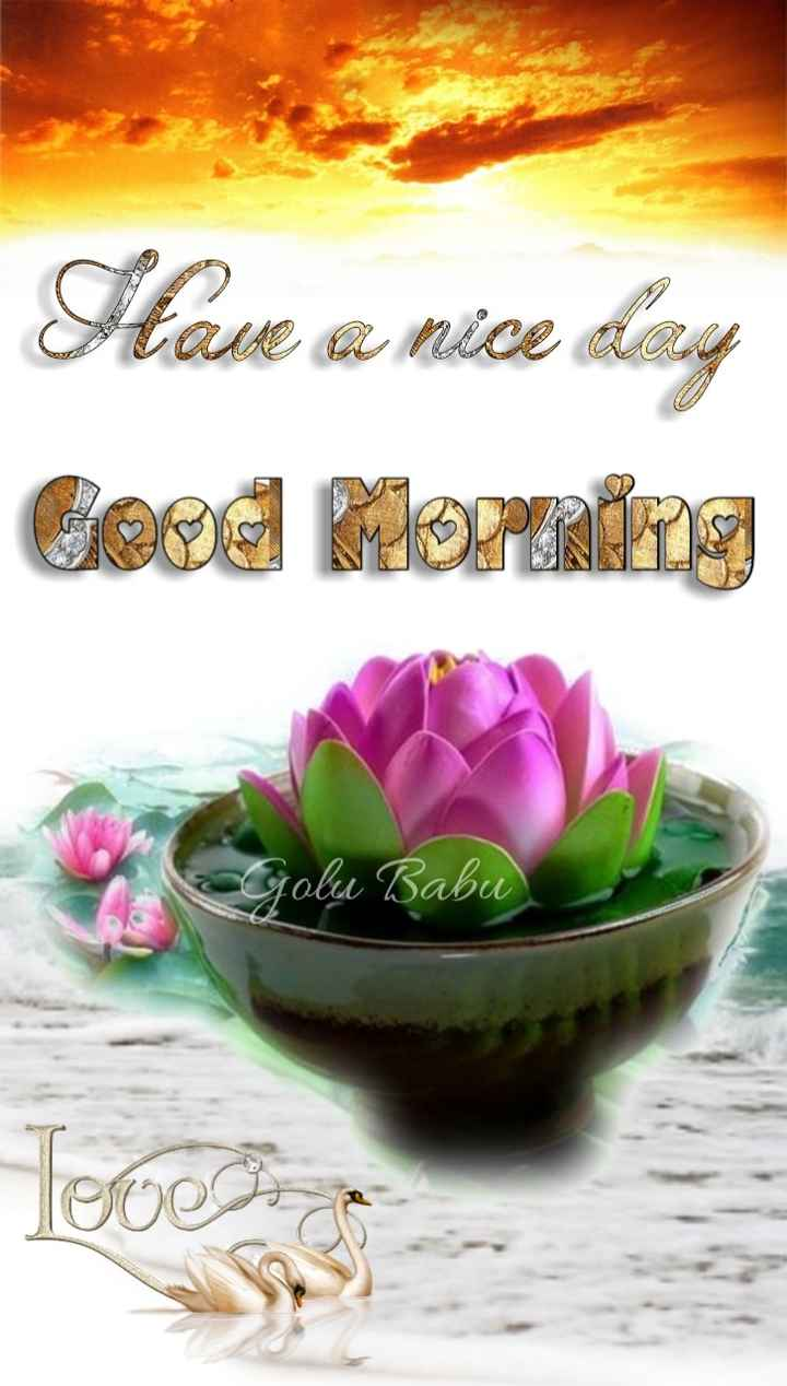 🌞Good Morning🌞 - Have a nice day Gerd Morning a Golu Babu Teres - ShareChat