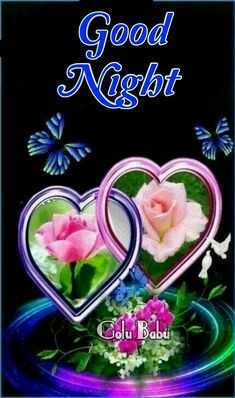 good_night - Good Niglot Golu Babu - ShareChat