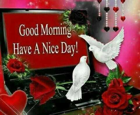 good morning 🙏 - QUE ORA Good Morning Have A Nice Day ! - ShareChat