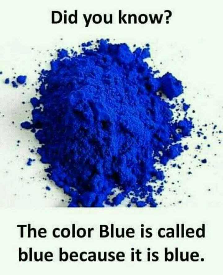 colors in life - Did you know ? The color Blue is called blue because it is blue . - ShareChat