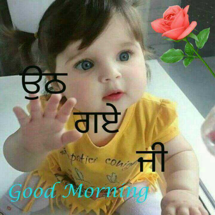 good morning ji - ਉਨ ਗਏ boticr conਆ Good More - ShareChat