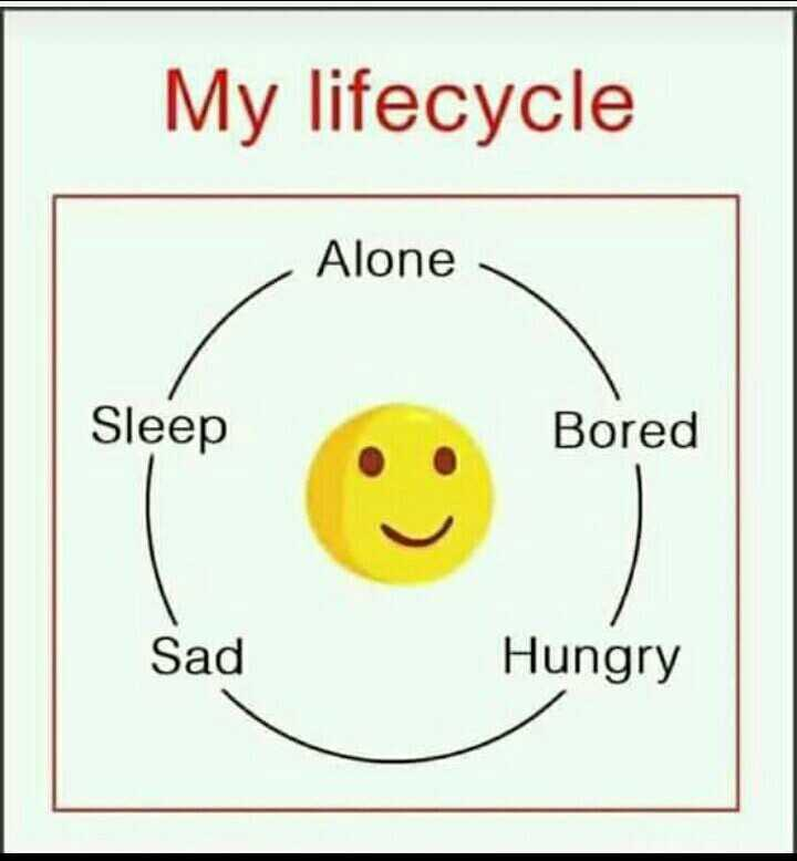 mere thought - My lifecycle Alone Sleep Bored Sad Hungry - ShareChat
