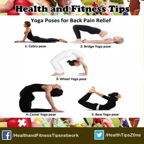 Fitness - Health and Fitness Tips Yoga Poses for Back Pain Relief 1 : Cobra pose 2 : Bridge Yoga pose 3 : Wheel Yoga pose 4 : Camel Yoga pose 5 : Bow Yoga pose f / HealthandFitness Tipsnetwork I Health TipsZone - ShareChat
