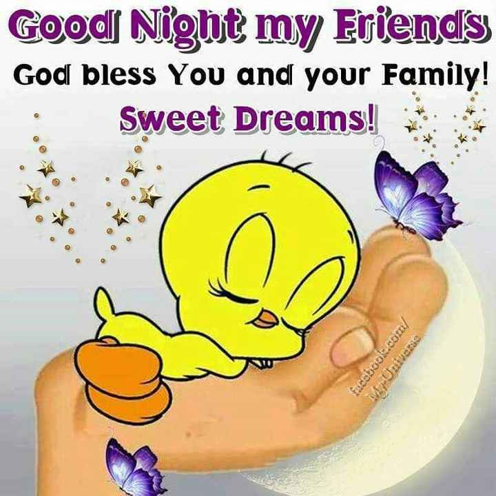 happy savan🌧️🌧️🌧️☔️☔️ - Good Nig bt my Eriends Godl bless You and your Family! Sweet Dreams! 0 - ShareChat