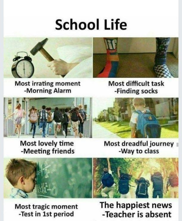 स्कूल मेमोरी - School Life Most irrating moment -Morning Alarm difficult task -Finding socks lovely time Meeting friends dreadful journey -Way to class tragic momentThe happiest news -Test in 1st period -Teacher is absent - ShareChat