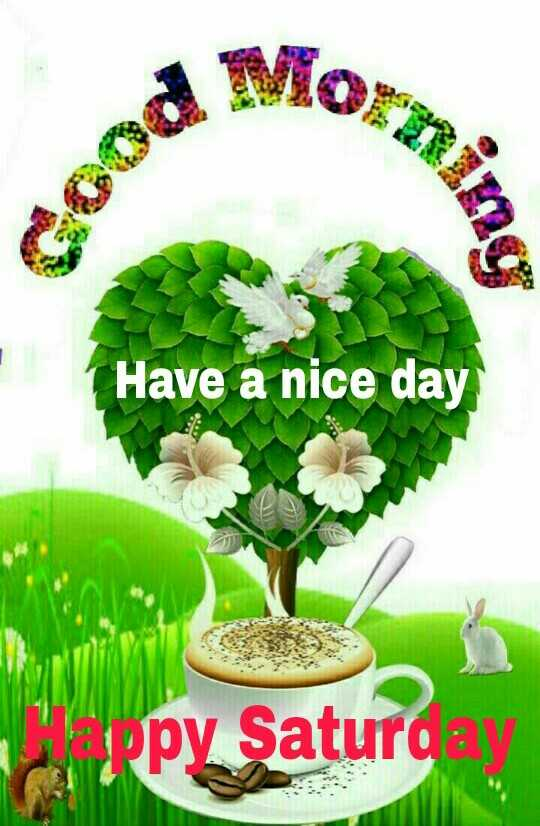 காலை வணக்கம் - Have a nice day py Satur ay - ShareChat