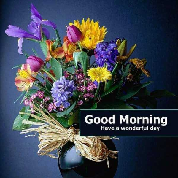 Good morning - Good Morning Have a wonderful day - ShareChat
