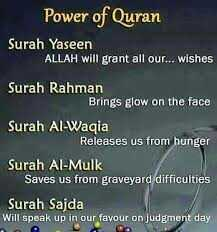 Islamic status - Power of Quran Surah Yaseen ALLAH will grant all our... wishes Rahman Brings glow on the face Al-Waqia Releases us from hunger Al-Mulk Saves graveyard difficulties Sajda Will speak up in our favour judgment day - ShareChat