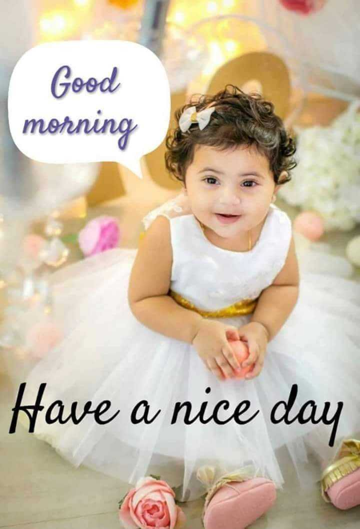 ❤️good morning❤️ - Good morning Have a nice day - ShareChat