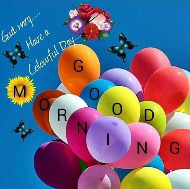 😱 अजीब पर सच 👍 - Gud ming . Have a Colourful Day . . . . - ShareChat